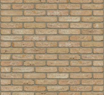 Кирпич керамический Rijswaard Billings HV WF / RC203